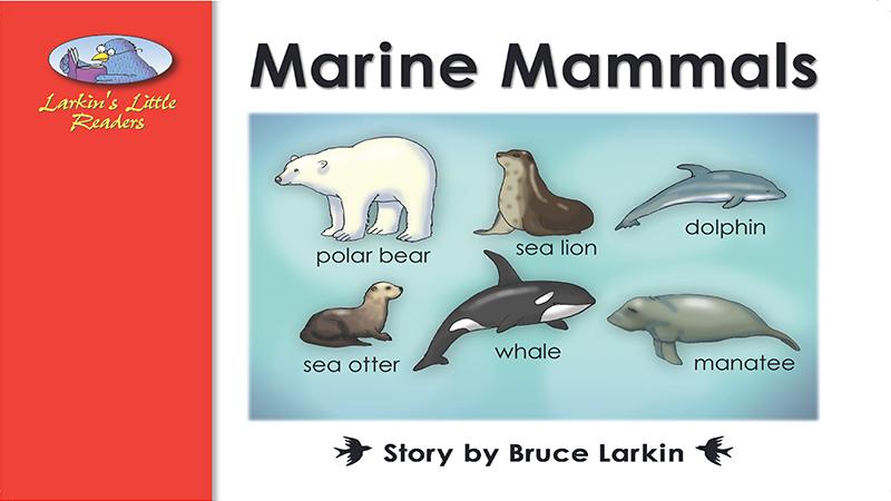 2098-JL12R Marine Mammals_Page_01