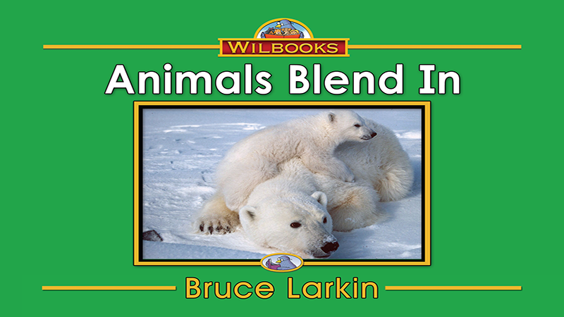 2486-GL8X Animals Blend In_Page_01