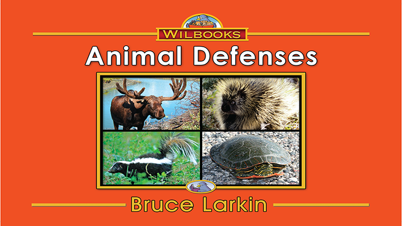2743-LL12X Animal Defenses_Page_01