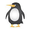 A Penguin Wears a Tuxedo