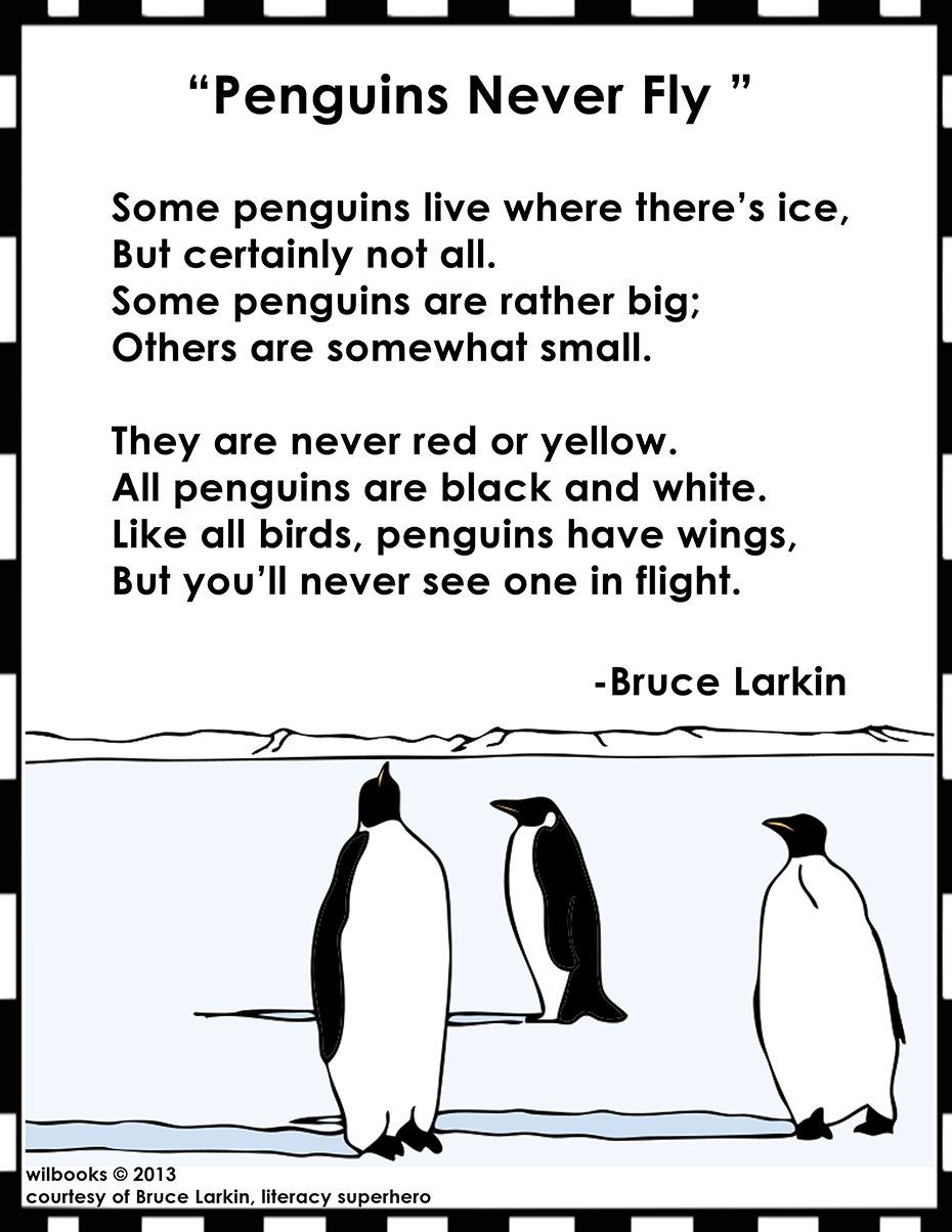 Penguins Never Fly