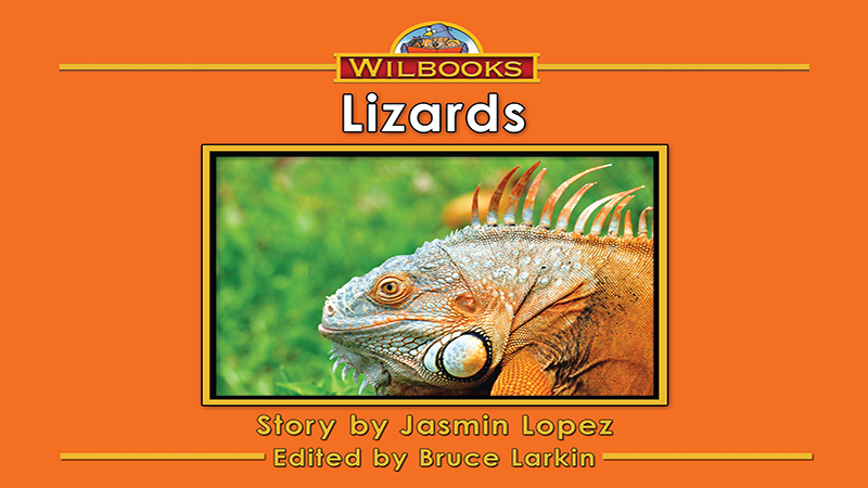 3715-XL8X Lizards_Page_01
