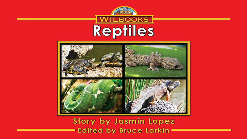 3717-XL8X Reptiles_Page_01